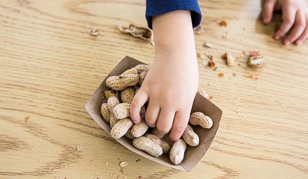 dětská ruka a arašídy